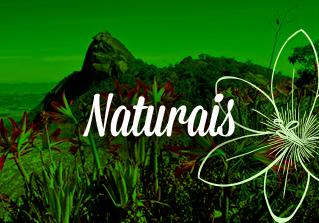 Naturais